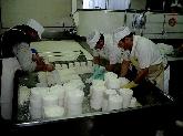 Queserías en Valladolid, quesos de mojadas,quesos de oveja valladolid.lacteos valladolid