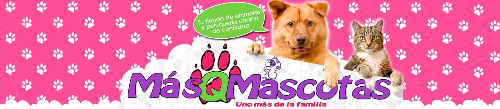 Másqmascotas en valladolid, tienda de animales en valladolid,peluquerias caninas