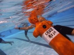 ¿Quieres ser socorrista acuático?