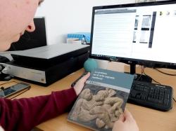 La Fundación Santa María la Real publica un monográfico sobre lo profano en el arte sagrado medieval