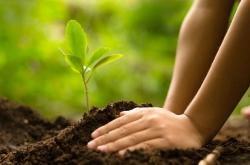 Ideas para generar menos impacto medioambiental en tu día a día