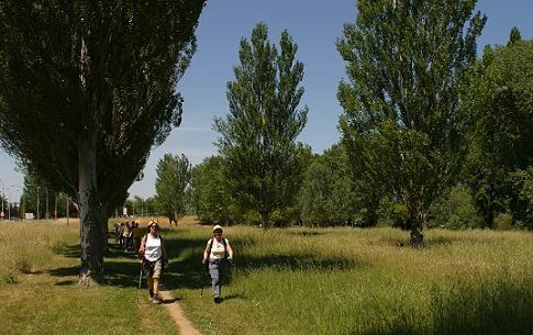 Paseo por la orilla del río Alegría