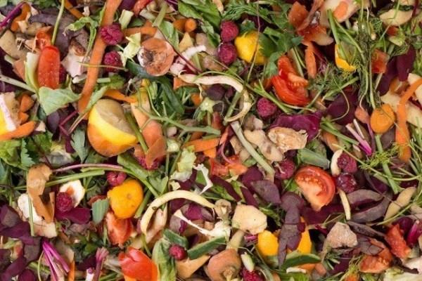 El nuevo Plan de Residuos de Álava se propone reducir la generación de residuos y aumentar la recogida de la fracción orgánica