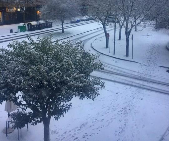 Recomendaciones ante el episodio de heladas y temperaturas bajas extremas