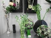 venta de flores en aldaia,venta de plantas en aldaia,la casita de las flores en aldaia.