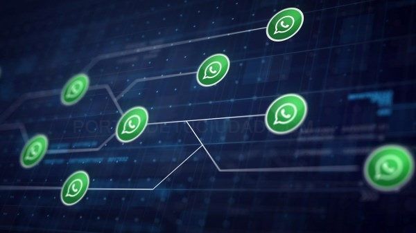 SEIS ERRORES A EVITAR AL USAR WHATSAPP BUSINESS