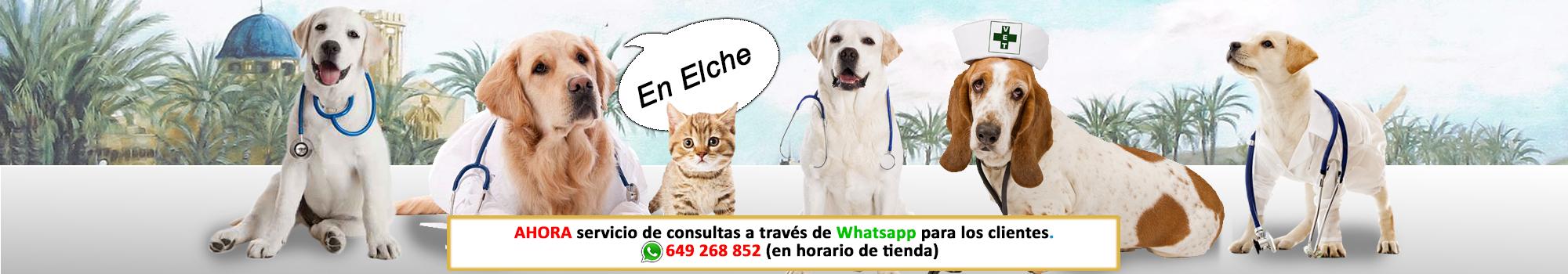 Consultas Veterinarias, veterinary, laboratory,  rayos x, piensos, nutricion animal