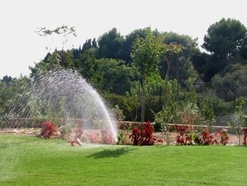 Diseño de jardines en elche, diseño de jardines en crevillente, diseño de jardines en santa pola