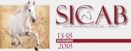 Comienza la venta de entradas para SICAB 2018