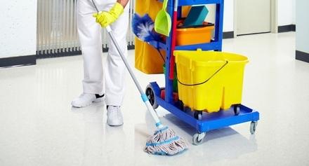 empresa de limpieza, recogida de casas