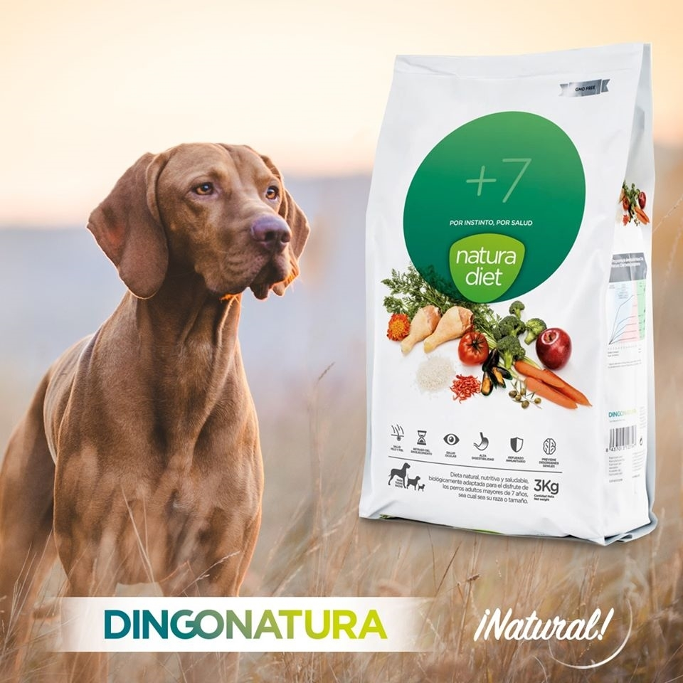 tienda online de alimento de mascotas