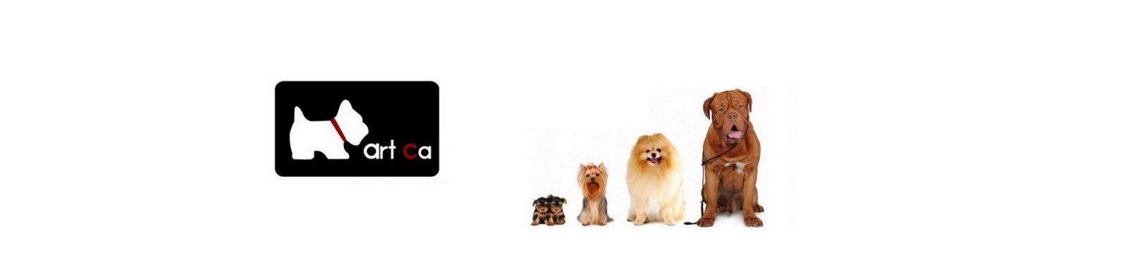 peluqueria canina en palma de mallorca