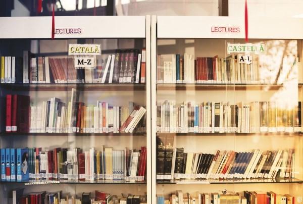 Aprobado el decreto sobre el uso de las lenguas oficiales en la Administración de la Comunidad Autónoma