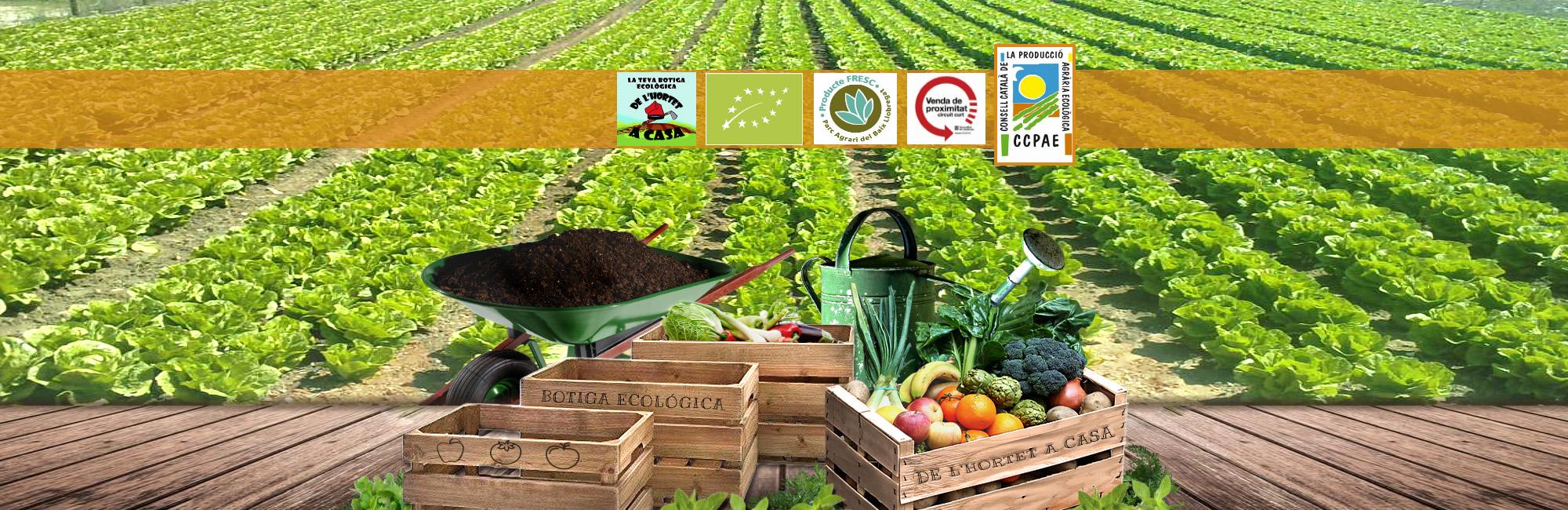 frutas ecologicas cornella, verduras ecologicas baix llobregat