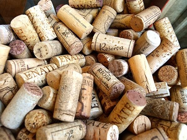 botiga venda especialitzada vins i caves DO cellers Baix Llobregat,