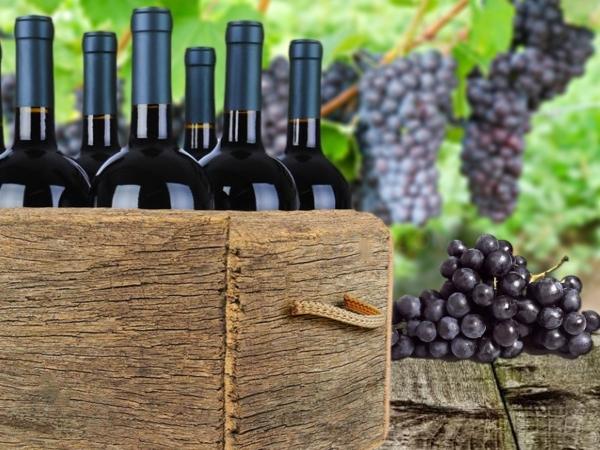 vins caves DO licors primeres marques, comprar vins Cornella,