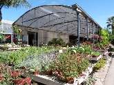 , jardineria cornella baix llobregat