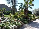 arboles cornella baix llobregat, decoracion jardin cornella baix llobregat barcelona,