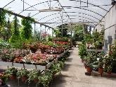 productos agricolas cornella baix llobregat, mantenimiento jardines cornella baix llobregat,