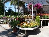 mantenimiento jardines cornella baix llobregat,