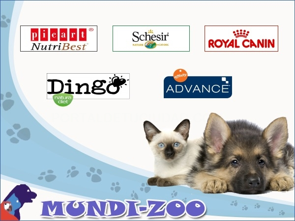 Mundi - Zoo