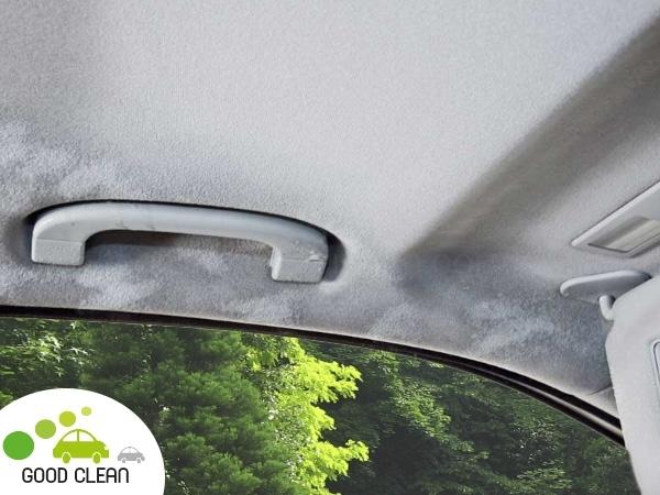 limpiar techo interior coche vapor,