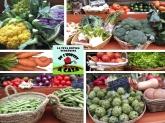 fruta natural ecologica baix llobregat,  verduras hortalizas ecologicas cornella