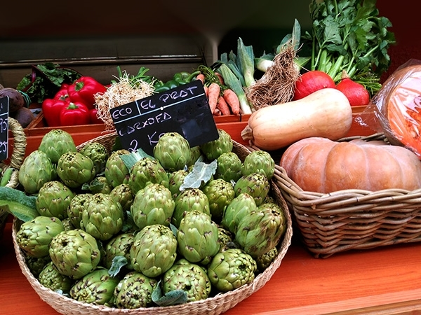 verdura  fruita parc agrari baix llobregat,