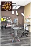 Centro veterinario Gavá,  Veterinaris Cornella