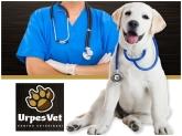 Clínica veterinaria El Prat de Llobregat, Centro veterinario Sant Just Desvern,