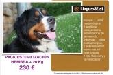 campaña veterinario bajo precio baix llobregat, veterinaris cornella baix llobregat