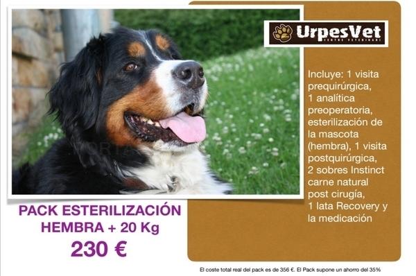 veterinarios barato low cost Baix Llobregat,