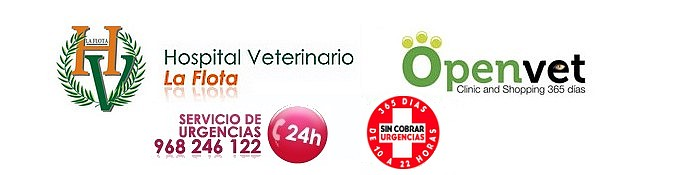 Hospital Veterinario La Flota
