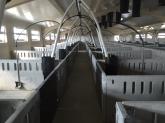 Chimeneas de hormigon en Murcia,  Prefabricados de hormigon en Murcia