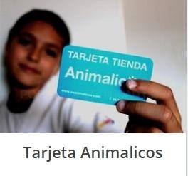 Veterinario Animalicos Murcia