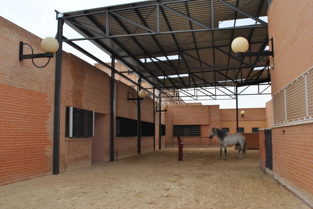 e54700cba1 Productos y servicios - Hospital Veterinario Universidad de Murcia ...