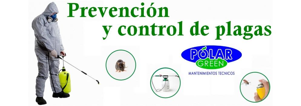 mantenimiento de piscinas en Murcia capital,