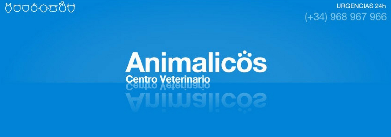 clínicas veterinarias en Murcia, veterinaria 24 horas Murcia, peluquería canica Molina segura,