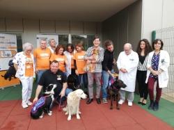 El proyecto 'Doctor Guau' cuenta con cinco perros especialmente entrenados para apoyar a los menores del Hospital Santa Lucía.