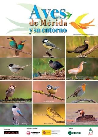 'Mes de las Aves' de Mérida
