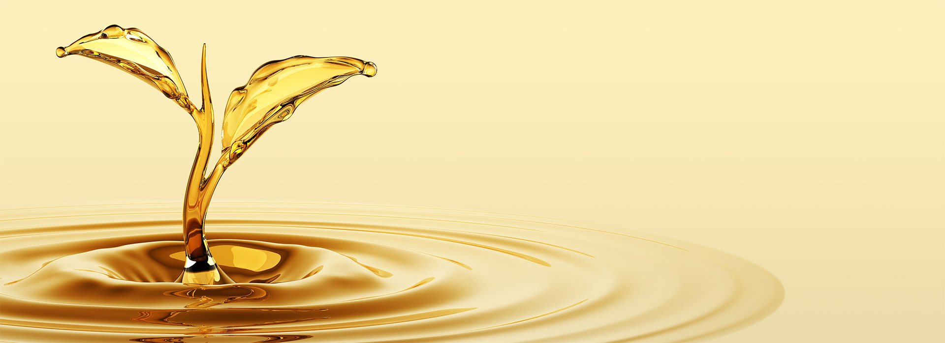 Recogida de aceite usado hosteleria granada