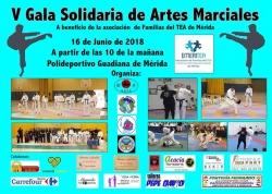 V Gala Solidaria de Artes Marciales a beneficio de Emeritea.