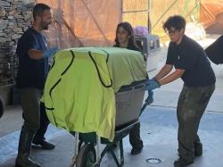 Se realiza un operativo de evacuación y traslado de nueve linces del Algarve al Centro de Cría de Granadilla.