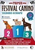 La asociación Acudame organiza un festival canino solidario en Mérida para recabar fondos para los perros abandonados