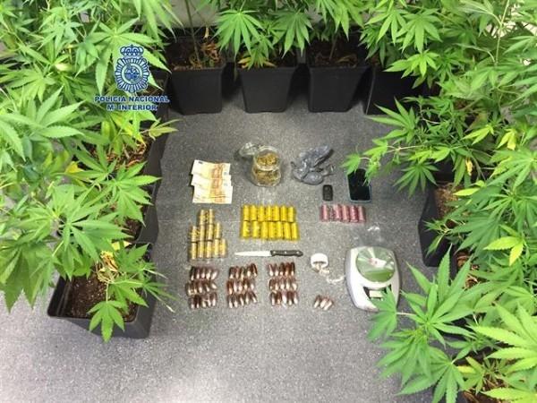 Dos detenidos por tráfico de drogas en Mérida