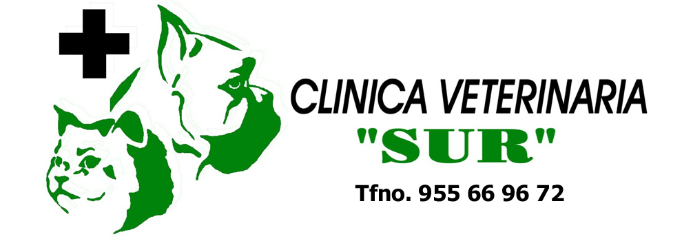 clinicas veterinarias en dos hermanas