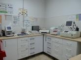 clinicas veterinarias cirugía de animales en dos hermanas, neurología de animales en dos hermanas