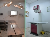 Clínicas veterinarias, Veterinarios