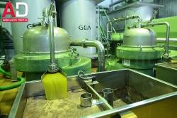Andalucía superó los 2.100 millones de euros en ventas de aceite de oliva al exterior entre enero y octubre