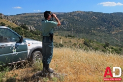 """La Junta declara la época de """"peligro alto"""" de incendios forestales hasta mediados del próximo mes de octubre"""